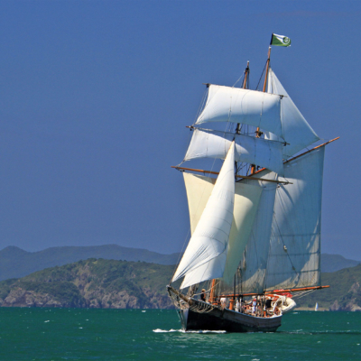 sail r tucker thompson bay of islands