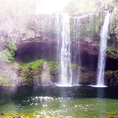 rainbow falls walk kerikeri