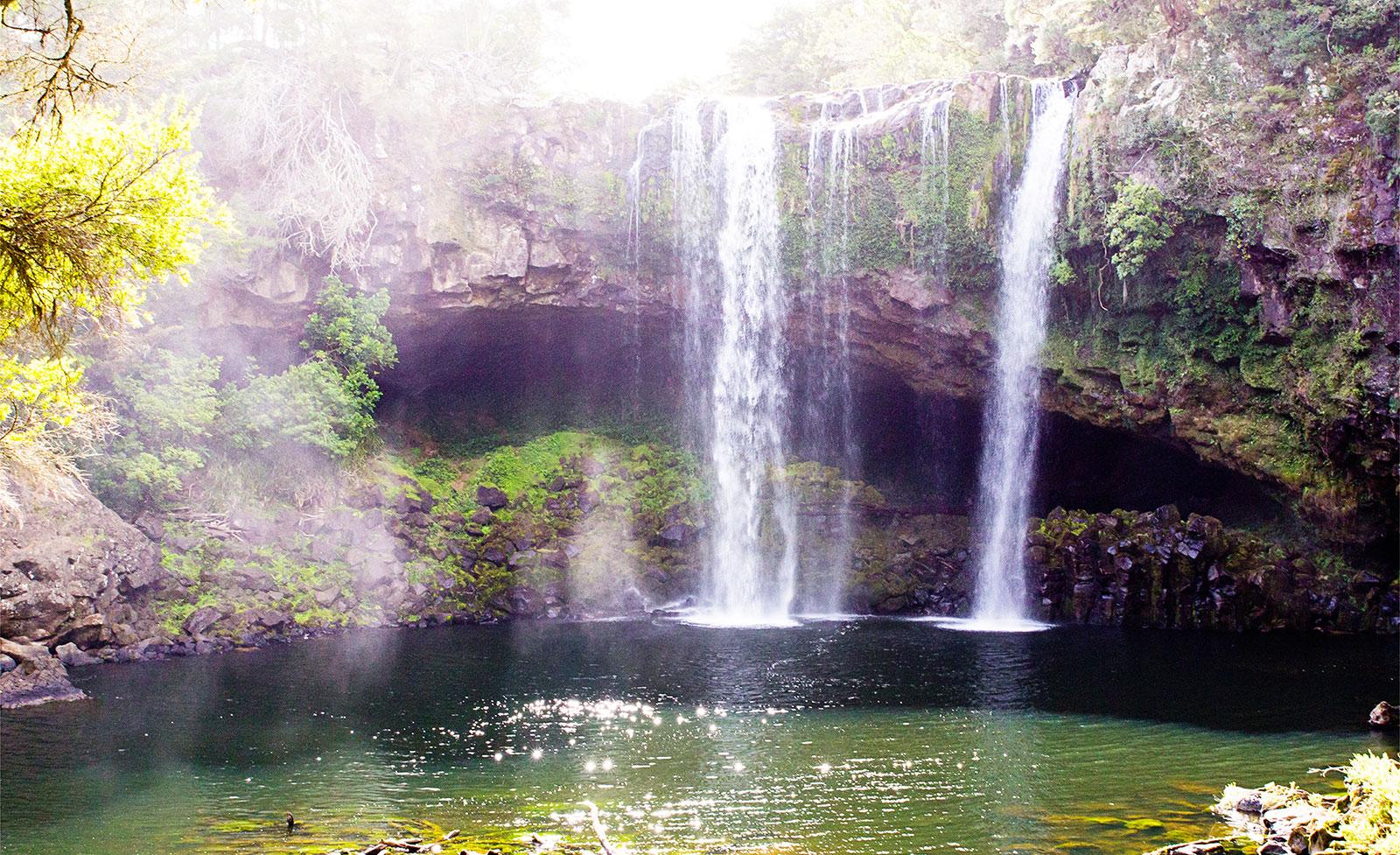 rainbow falls walk kerikeri
