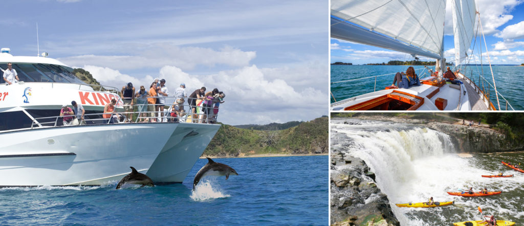 boat trips and things to do in bay of islands