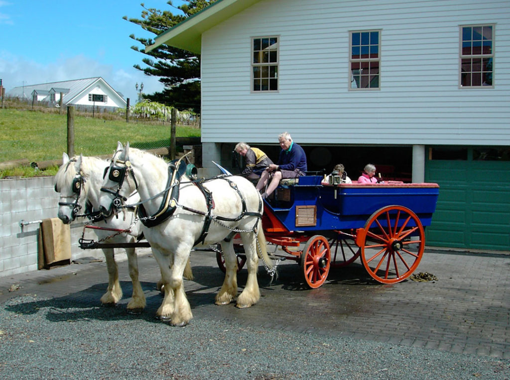horse and cart outside the carriage house accommodation kerikeri